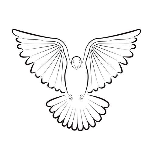 Dove symbol of hope
